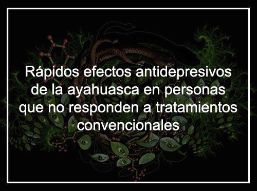 Estudio: Rápidos efectos antidepresivos de la ayahuasca en personas que no responden a los tratamientos convencionales para la depresión.